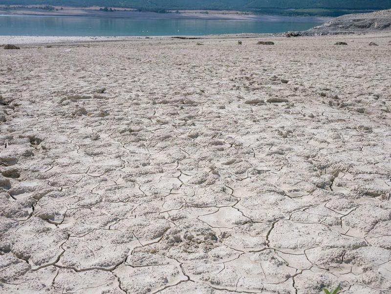 La sequía amenaza la cosecha de cereales en España